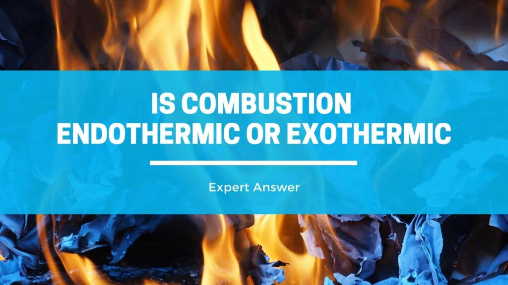 Combustion Endothermic or Exothermic