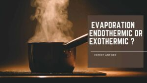 Is Evaporation Endothermic or Exothermic